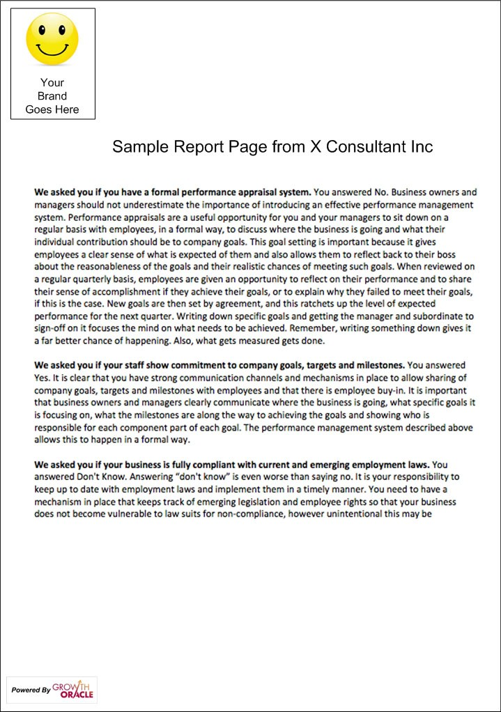 Sample Report Page - Business Assessment Tool